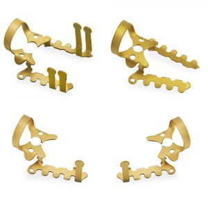 Haller Clamp Set of 4 Gold